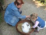 2011_Húsvét_Arborétum