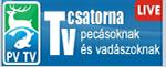 PV TV Live